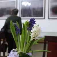 Гиацинты для Марины Цветаевой в зеркальном зале музея. Фото Татьяны Успенской