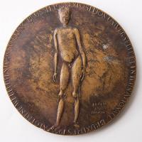 Бронзовая медаль международной выставки в Брюсселе 1958 года, присуждена А. П. Кибальникову за портрет В. В. Маяковского (1956 года)